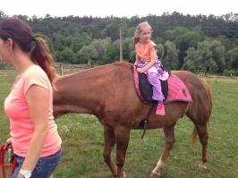 koně_15