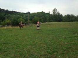 koně_17