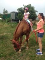 koně_9