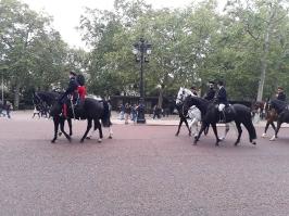 Londýn_9